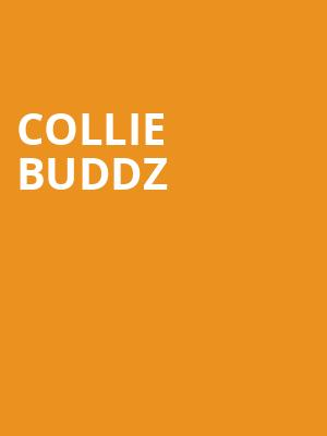 Collie Buddz at Corona Theatre